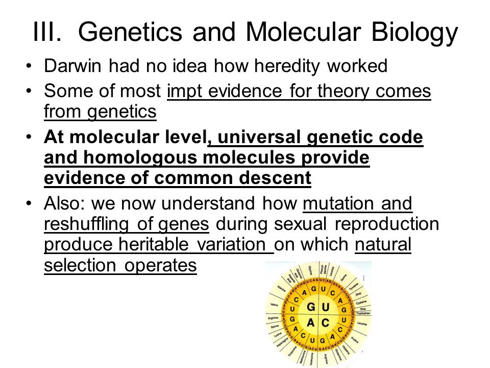 III. Genetics and Molecular Biology