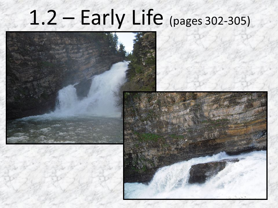 1.2 – Early Life (pages 302-305)