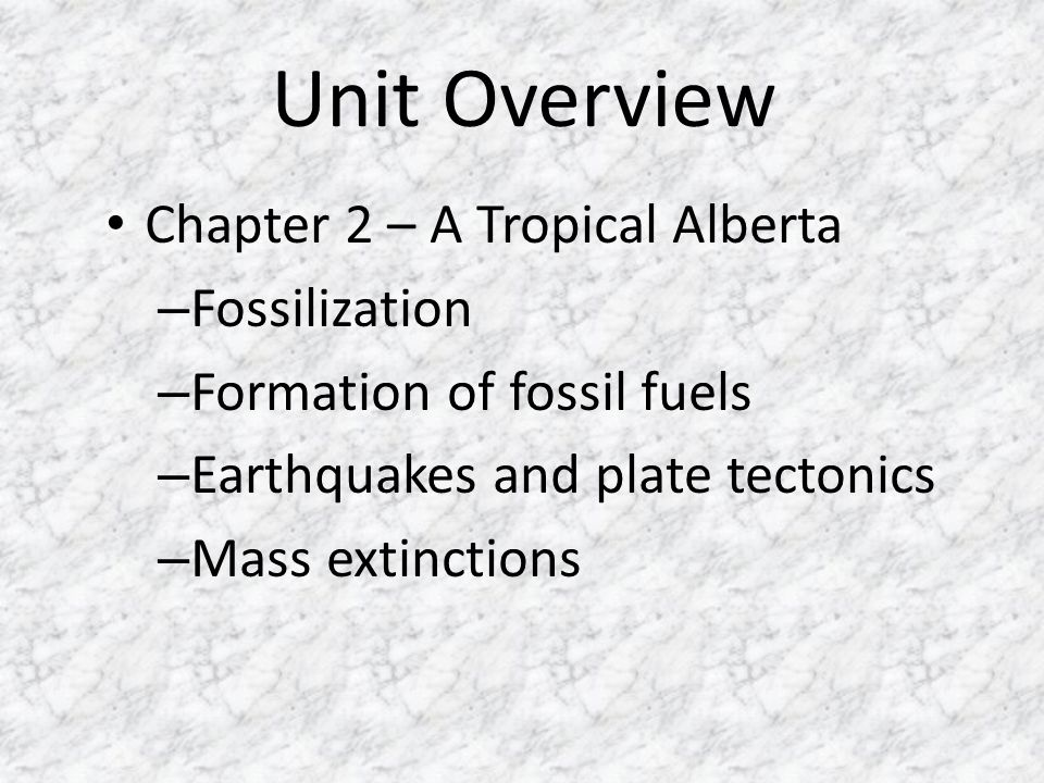 Unit Overview Chapter 2 – A Tropical Alberta Fossilization
