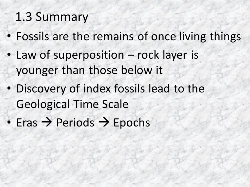 1.3 Summary Fossils are the remains of once living things
