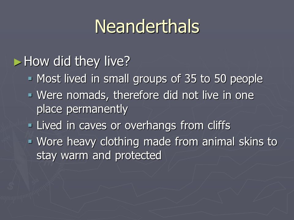 Neanderthals How did they live