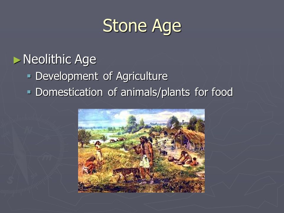 Stone Age Neolithic Age Development of Agriculture