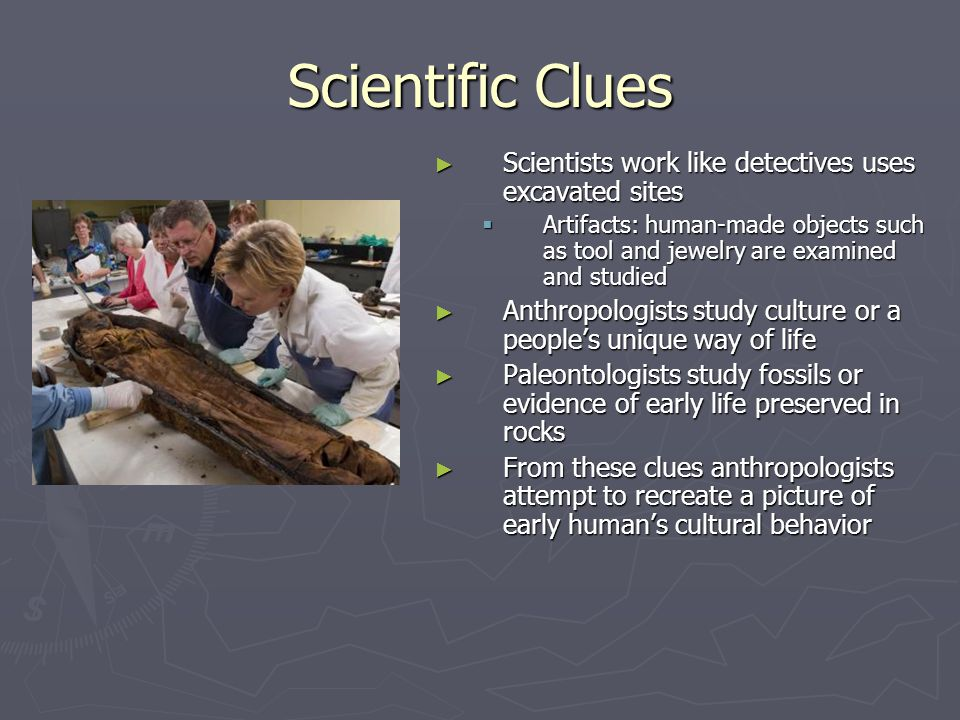 Scientific Clues Scientists work like detectives uses excavated sites