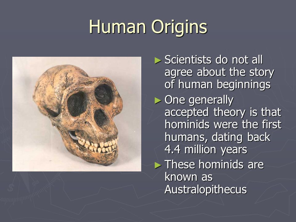 Human Origins Scientists do not all agree about the story of human beginnings.