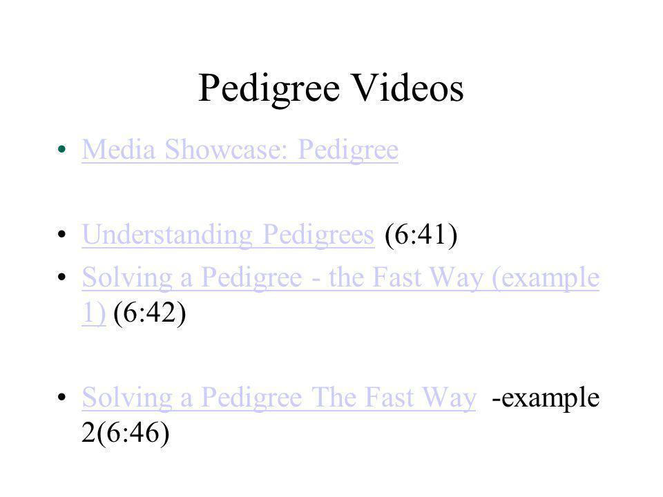 Pedigree Videos Media Showcase: Pedigree