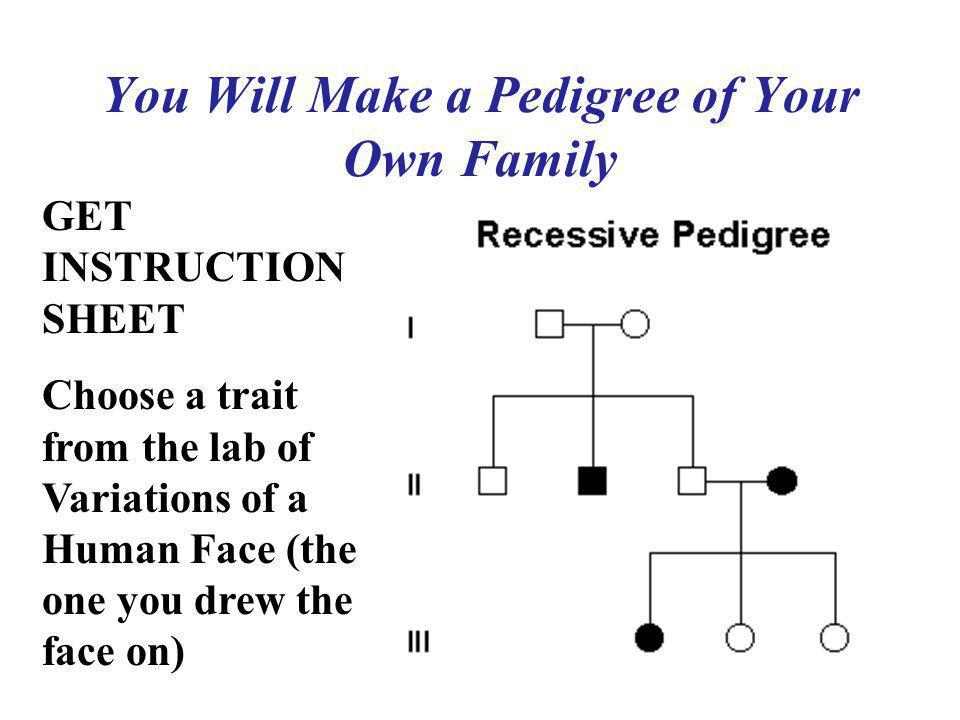 You Will Make a Pedigree of Your Own Family