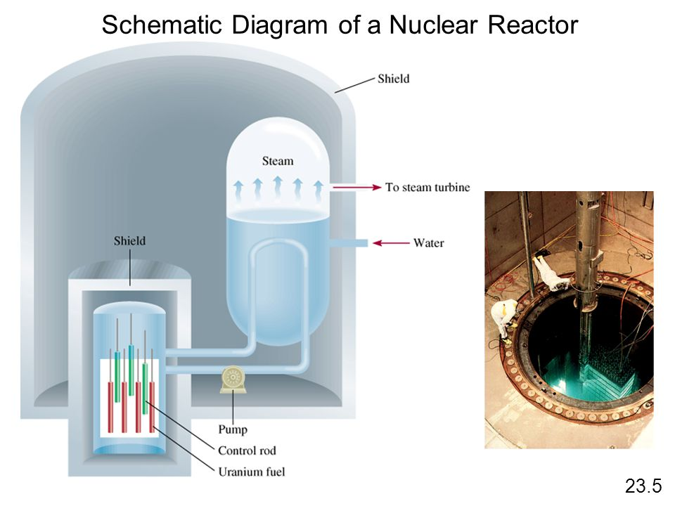 Schematic Diagram of a Nuclear Reactor