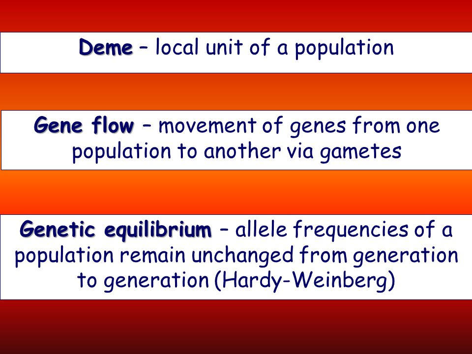Deme – local unit of a population