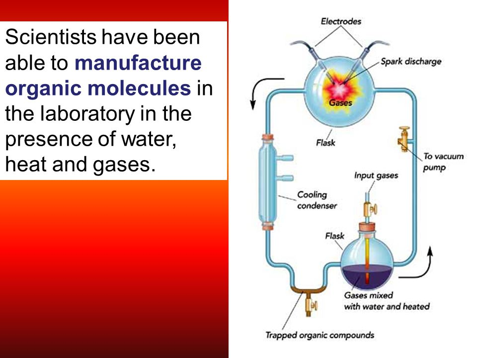 Scientists have been able to manufacture organic molecules in the laboratory in the presence of water, heat and gases.