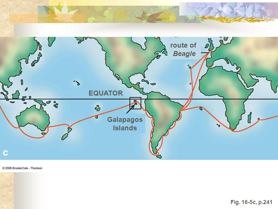 route of Beagle Galapagos Islands