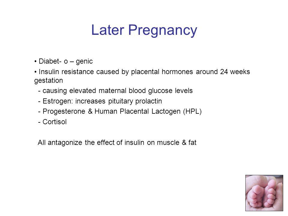 Later Pregnancy Diabet- o – genic