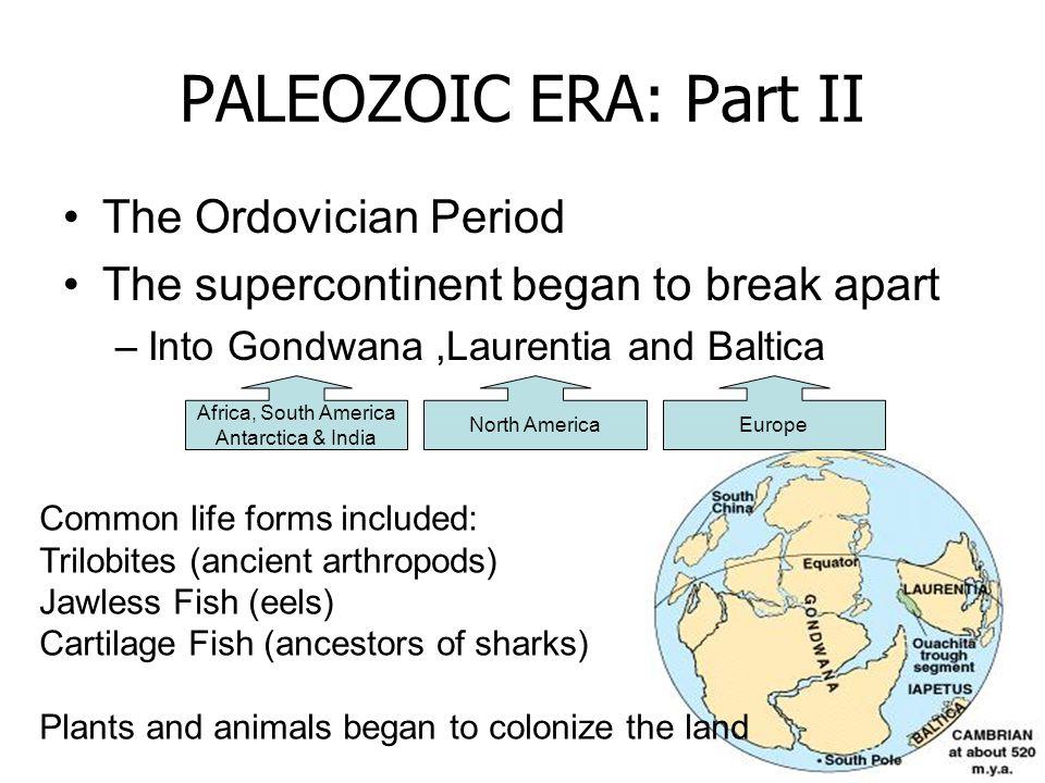 PALEOZOIC ERA: Part II The Ordovician Period