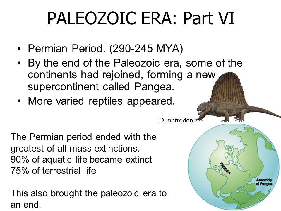 PALEOZOIC ERA: Part VI Permian Period. (290-245 MYA)