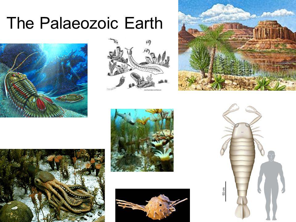 The Palaeozoic Earth