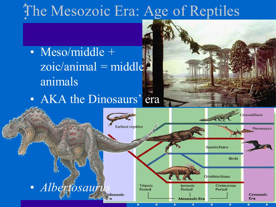 The Mesozoic Era: Age of Reptiles