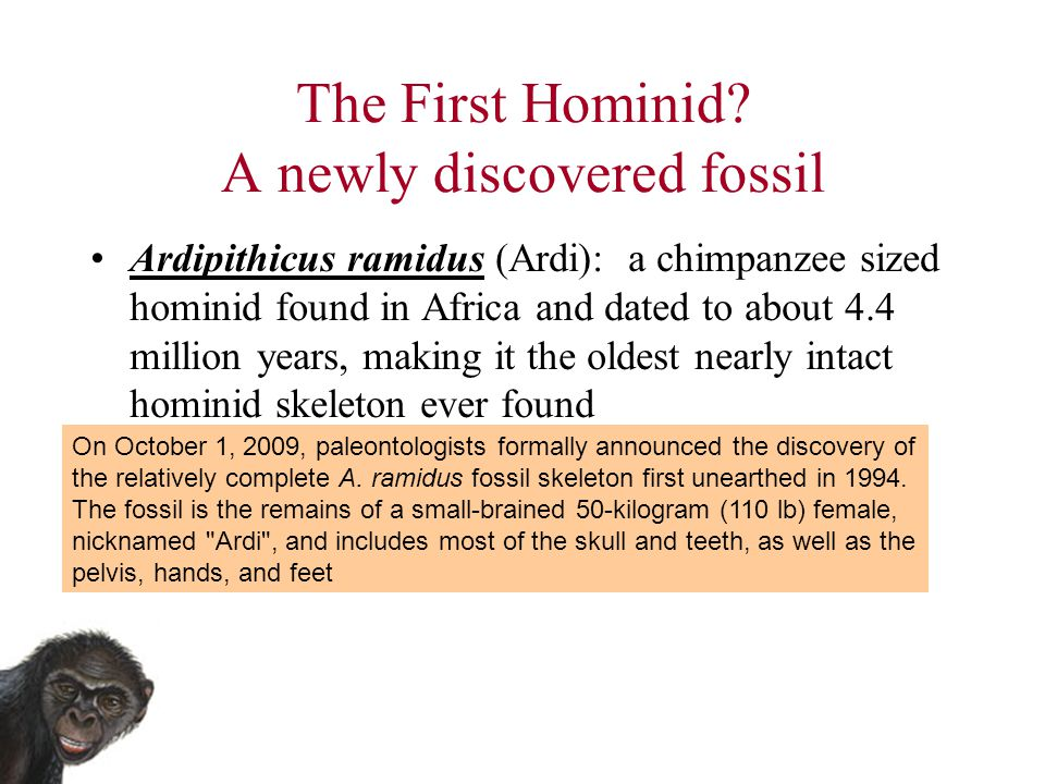 The First Hominid A newly discovered fossil