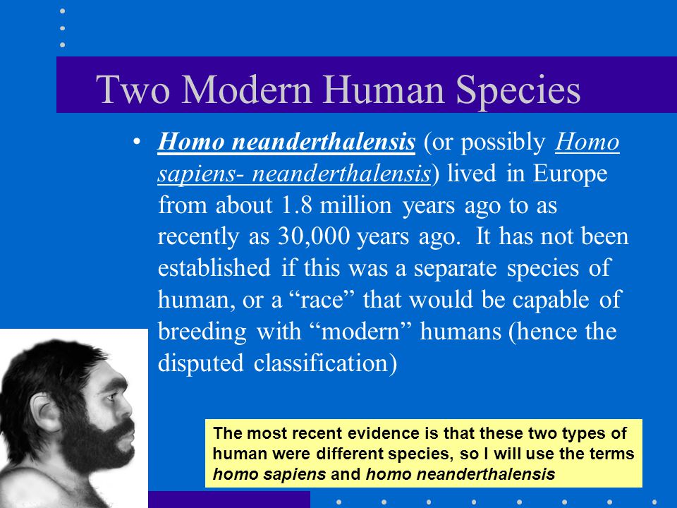 Two Modern Human Species