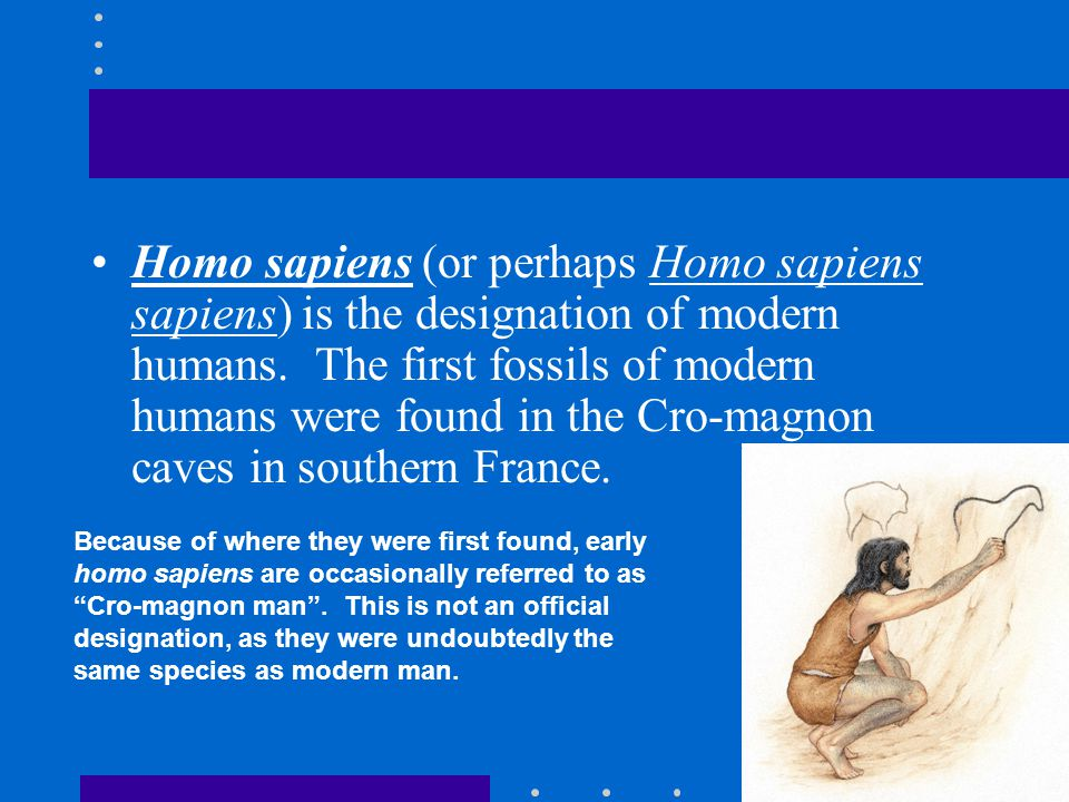 Homo sapiens (or perhaps Homo sapiens sapiens) is the designation of modern humans. The first fossils of modern humans were found in the Cro-magnon caves in southern France.