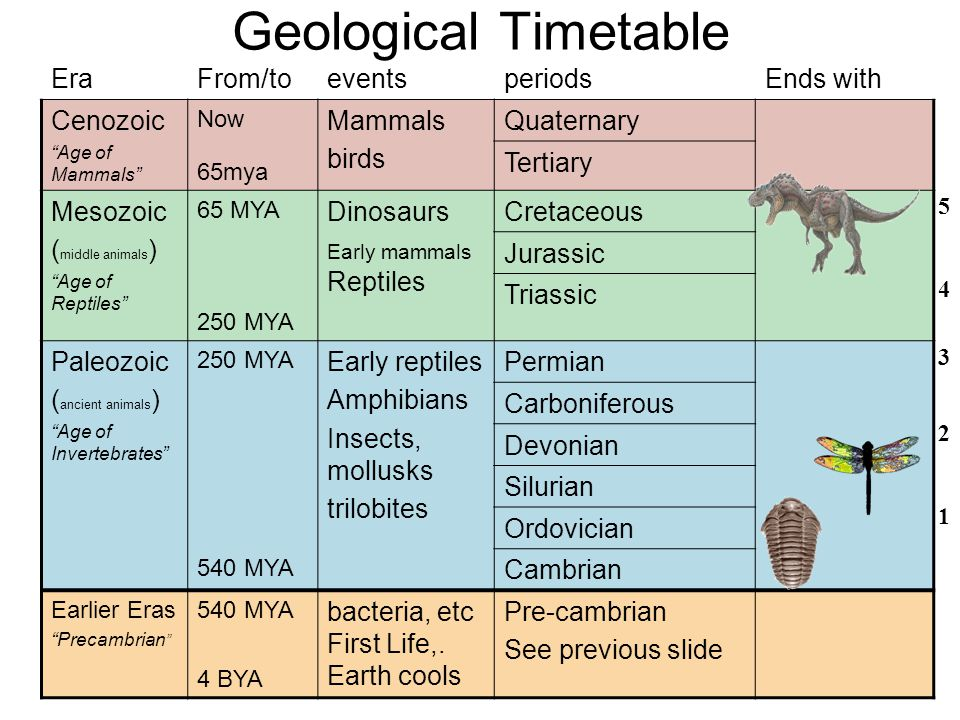 Geological Timetable Era From/to events periods Ends with Cenozoic