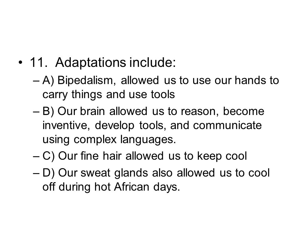 11. Adaptations include: A) Bipedalism, allowed us to use our hands to carry things and use tools.