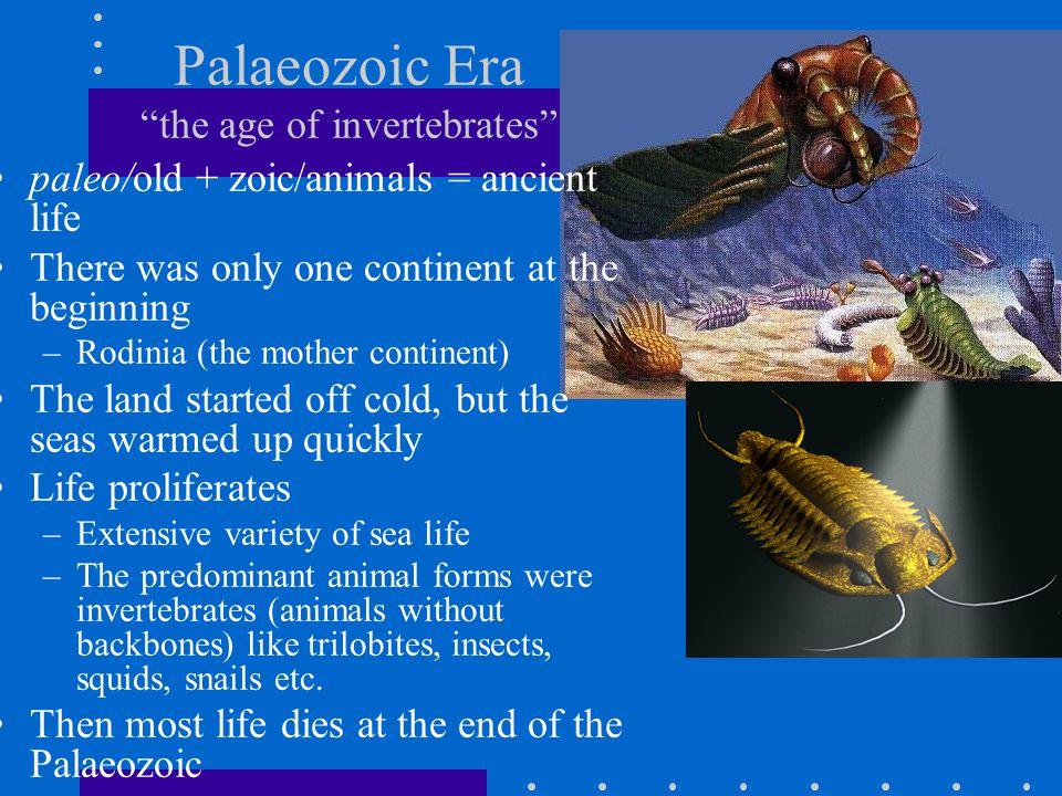 Palaeozoic Era the age of invertebrates