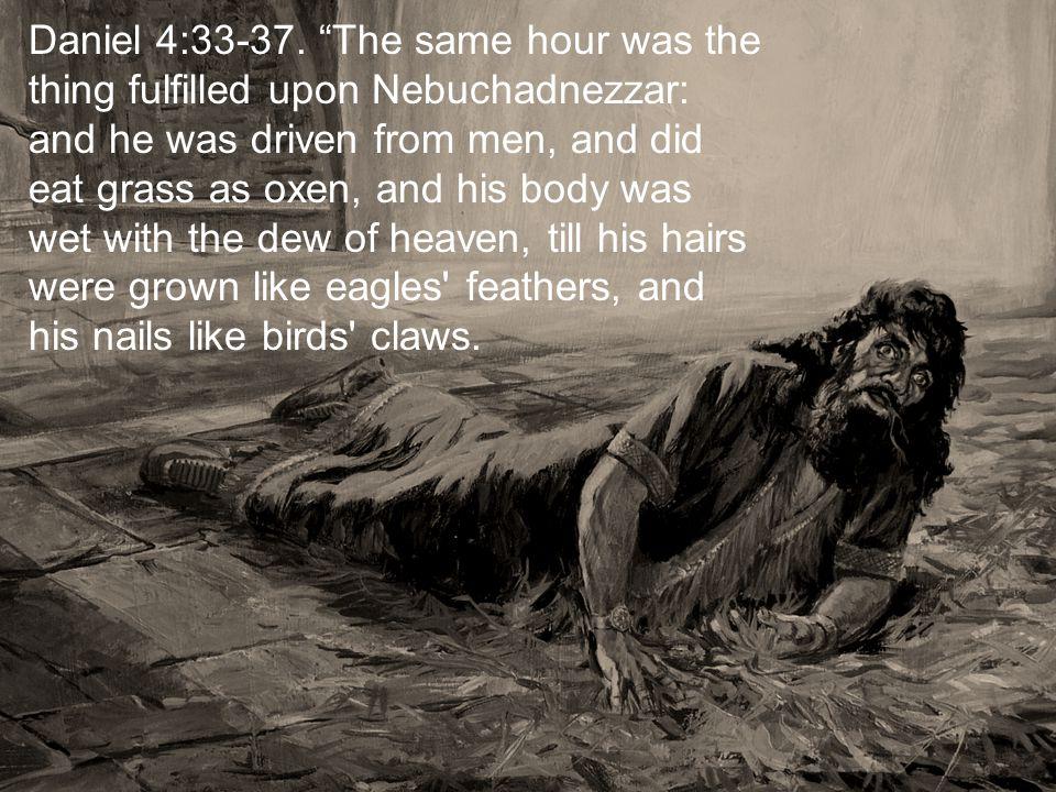 Daniel 4:33-37.