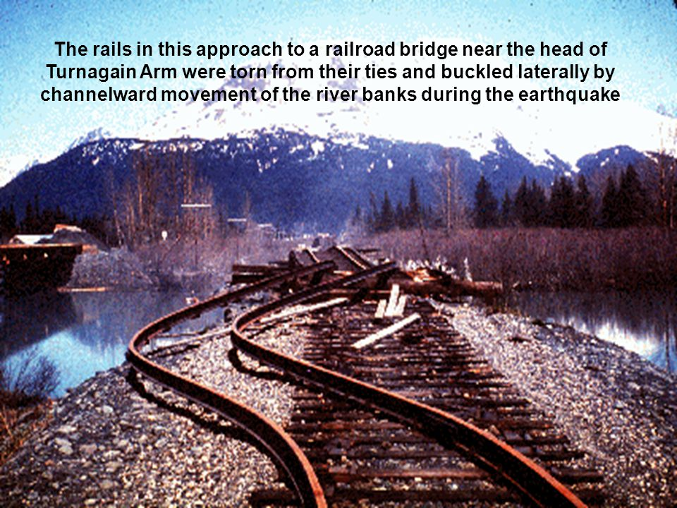 The rails in this approach to a railroad bridge near the head of Turnagain Arm were torn from their ties and buckled laterally by channelward movement of the river banks during the earthquake