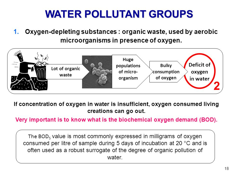 Bulky consumption of oxygen Deficit of oxygen in water