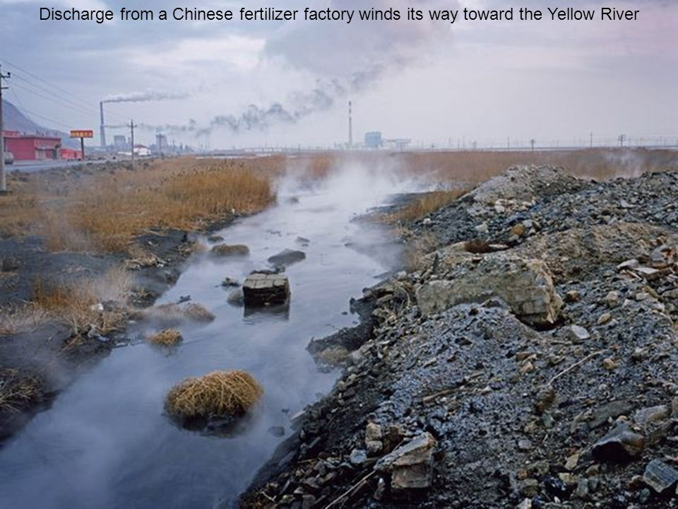 Discharge from a Chinese fertilizer factory winds its way toward the Yellow River