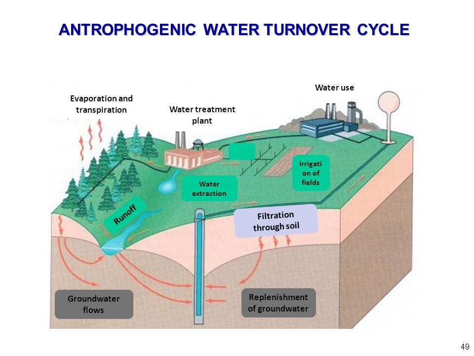 Replenishment of groundwater Evaporation and transpiration