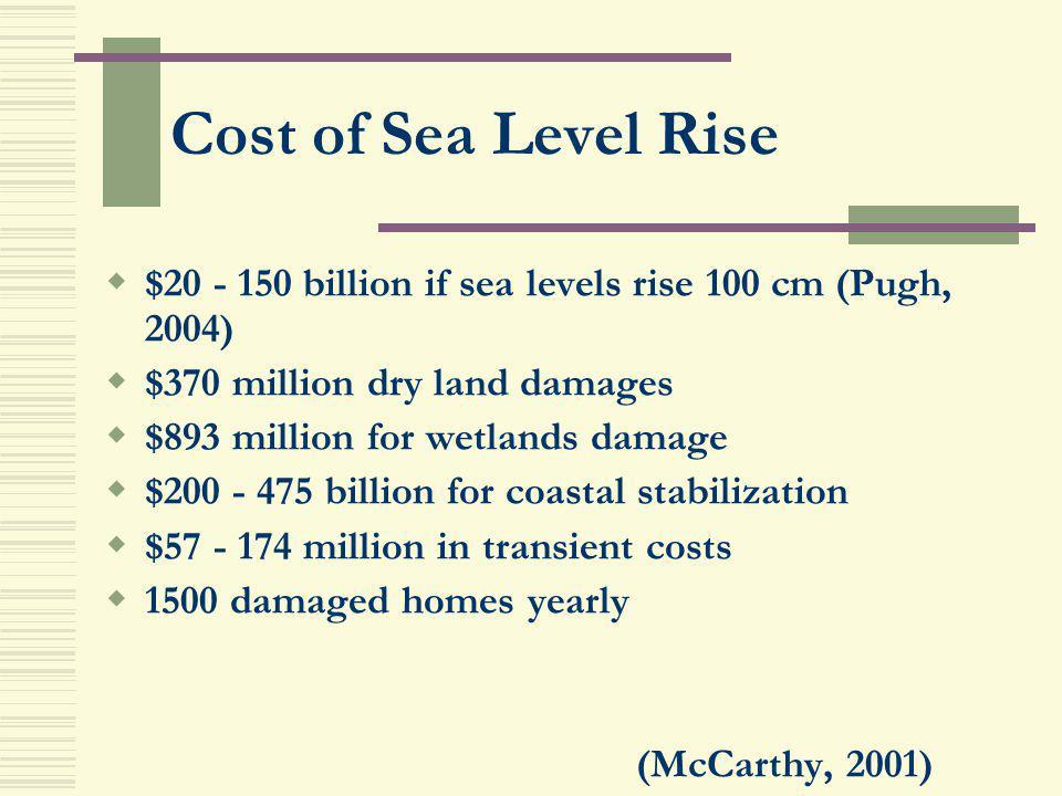Cost of Sea Level Rise $20 - 150 billion if sea levels rise 100 cm (Pugh, 2004) $370 million dry land damages.