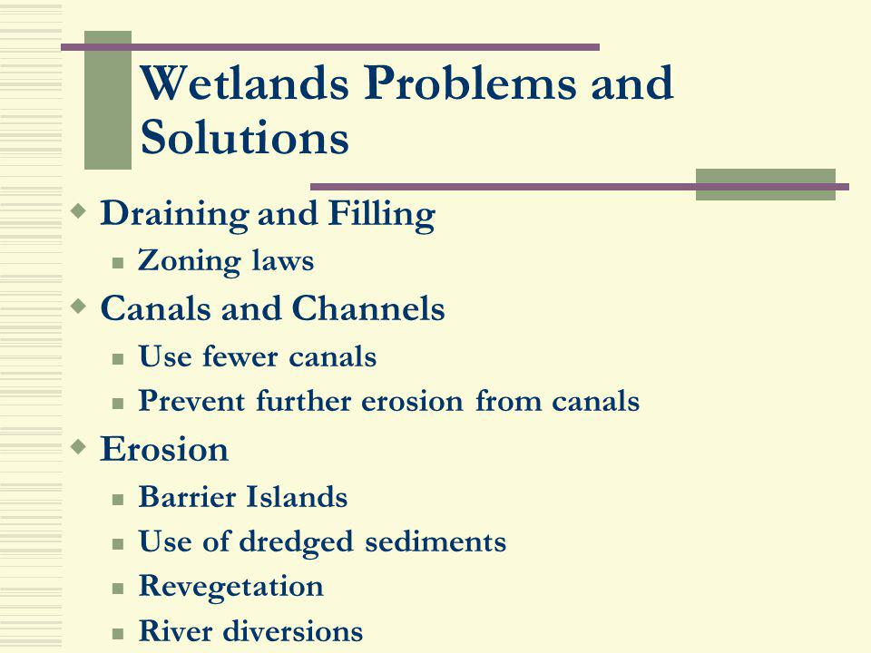 Wetlands Problems and Solutions