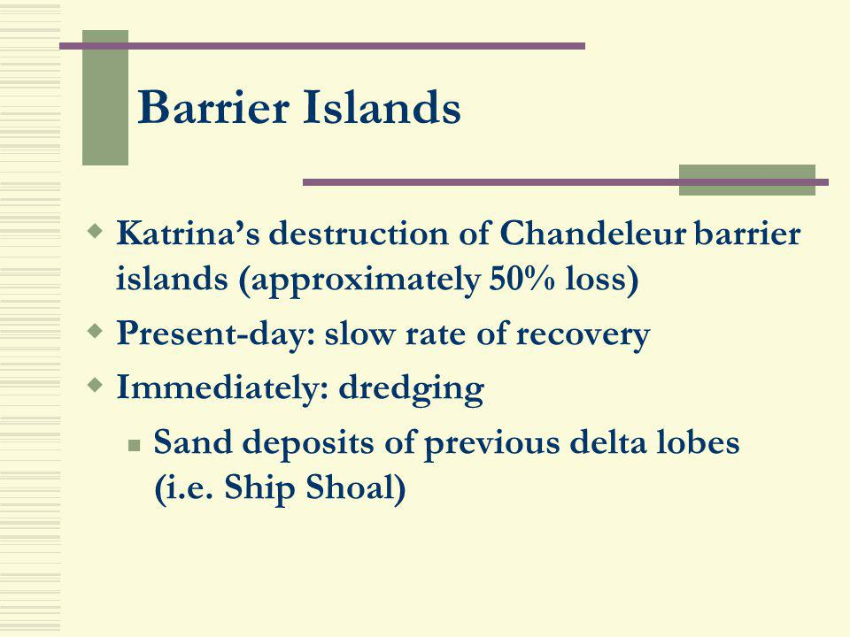 Barrier Islands Katrina's destruction of Chandeleur barrier islands (approximately 50% loss) Present-day: slow rate of recovery.