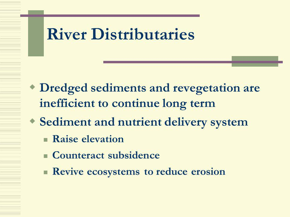 River Distributaries Dredged sediments and revegetation are inefficient to continue long term. Sediment and nutrient delivery system.