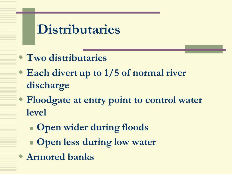 Distributaries Two distributaries
