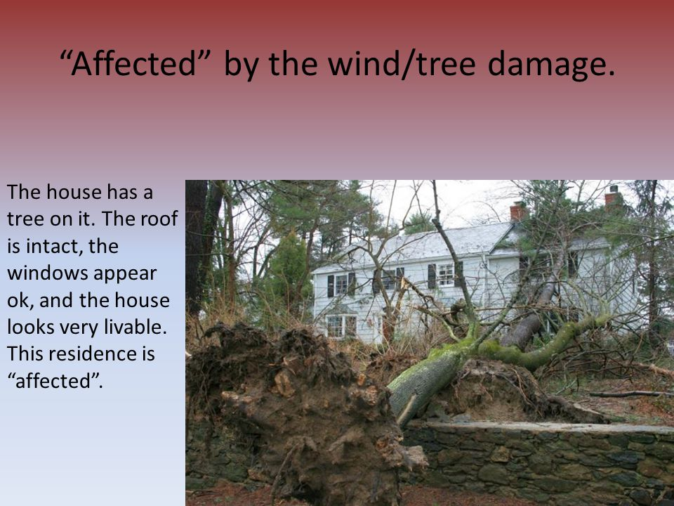 Affected by the wind/tree damage.