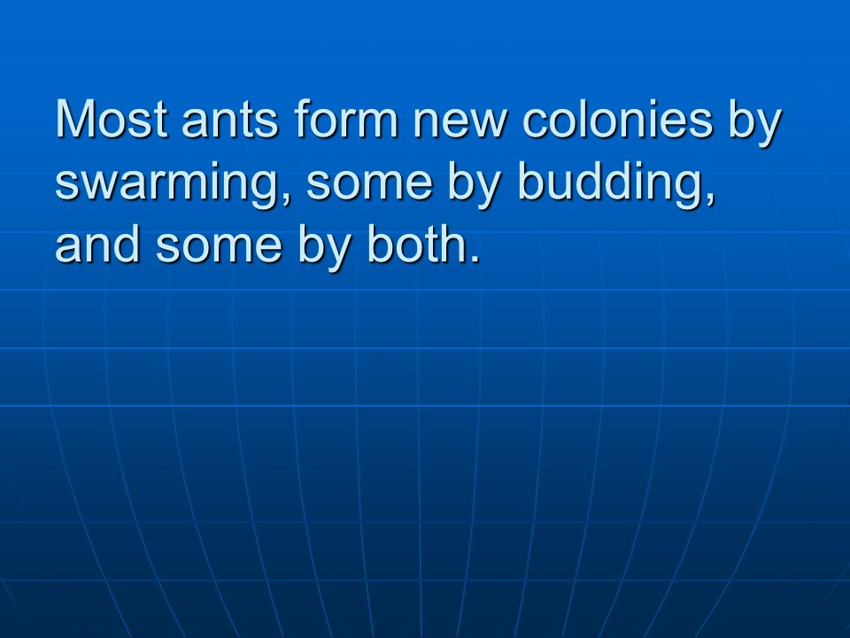 Most ants form new colonies by swarming, some by budding, and some by both.