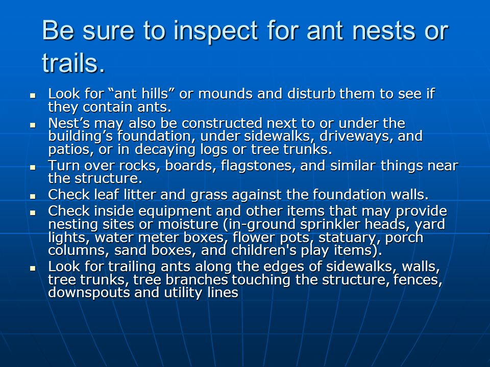 Be sure to inspect for ant nests or trails.