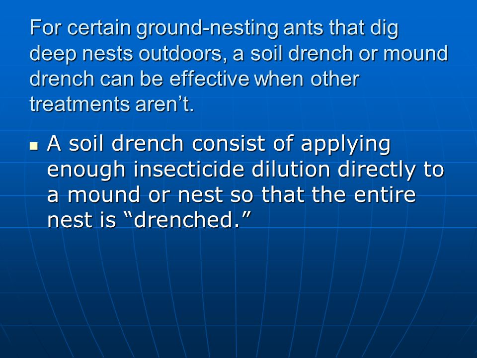 For certain ground-nesting ants that dig deep nests outdoors, a soil drench or mound drench can be effective when other treatments aren't.