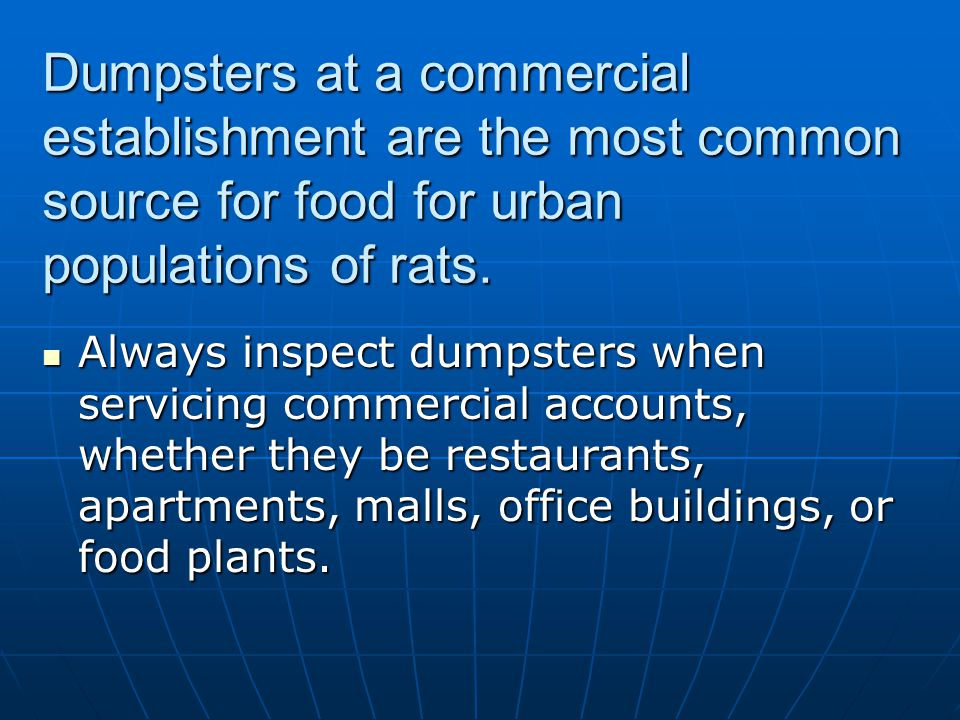 Dumpsters at a commercial establishment are the most common source for food for urban populations of rats.