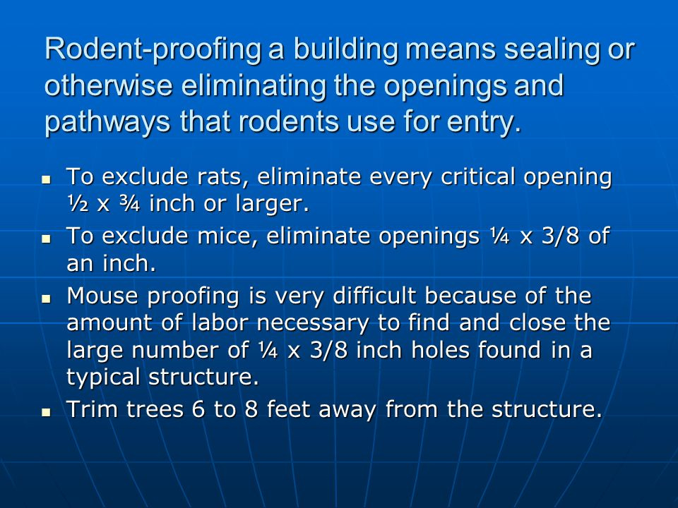 Rodent-proofing a building means sealing or otherwise eliminating the openings and pathways that rodents use for entry.
