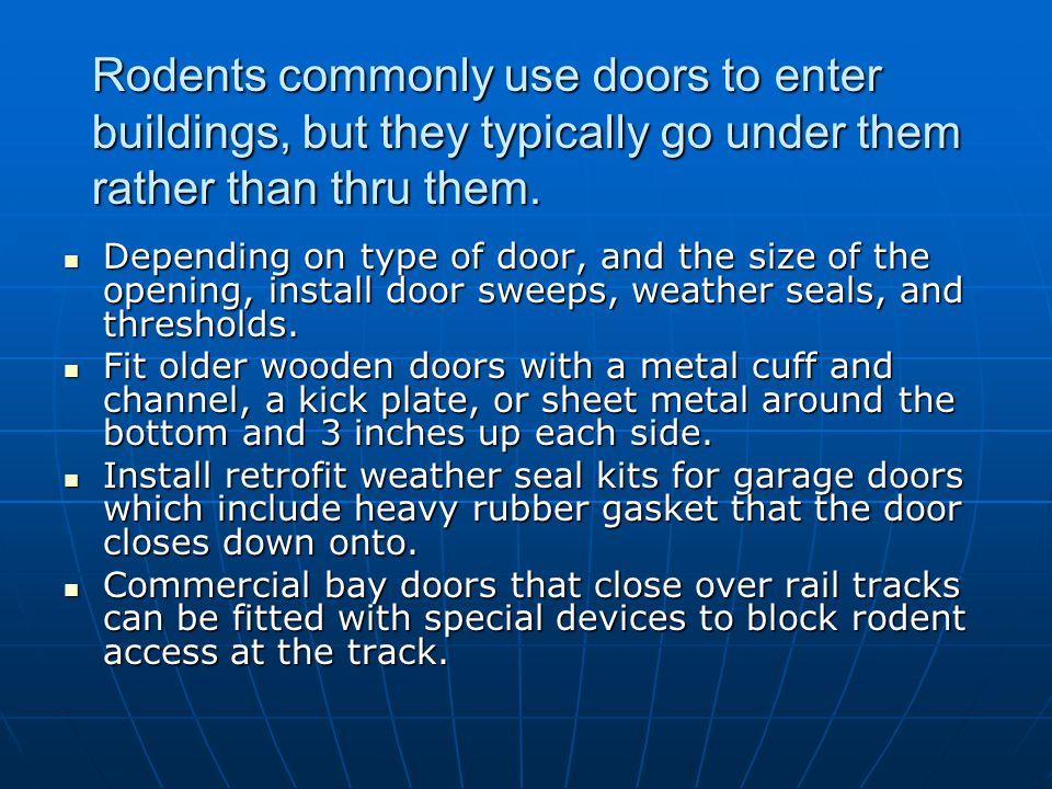 Rodents commonly use doors to enter buildings, but they typically go under them rather than thru them.
