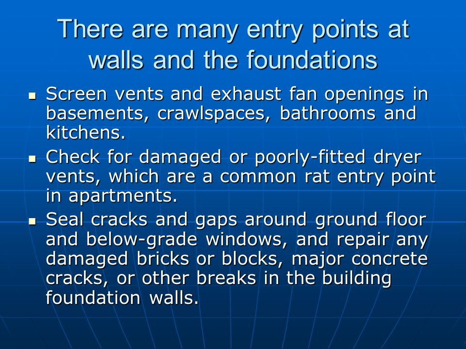 There are many entry points at walls and the foundations