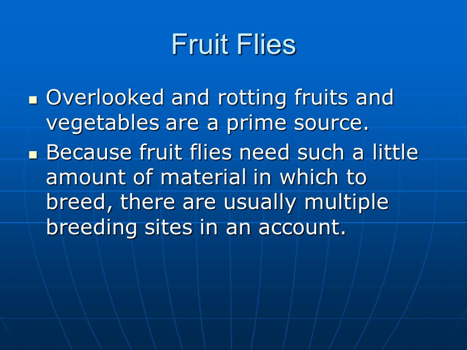 Fruit Flies Overlooked and rotting fruits and vegetables are a prime source.