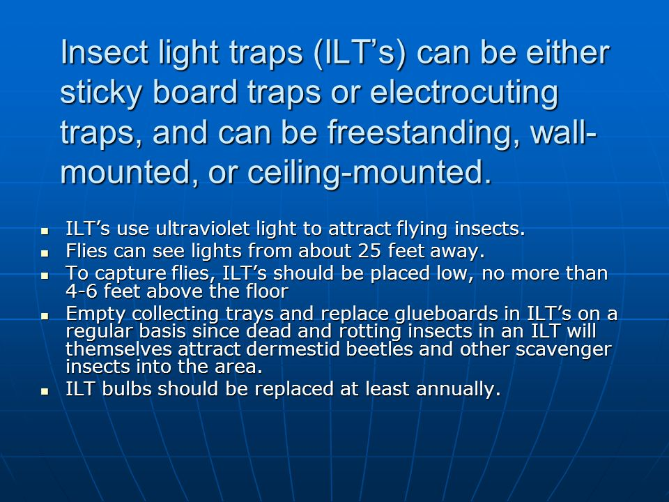 Insect light traps (ILT's) can be either sticky board traps or electrocuting traps, and can be freestanding, wall-mounted, or ceiling-mounted.