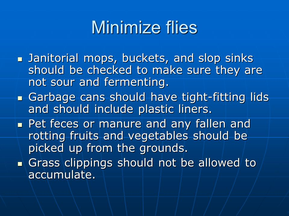 Minimize flies Janitorial mops, buckets, and slop sinks should be checked to make sure they are not sour and fermenting.