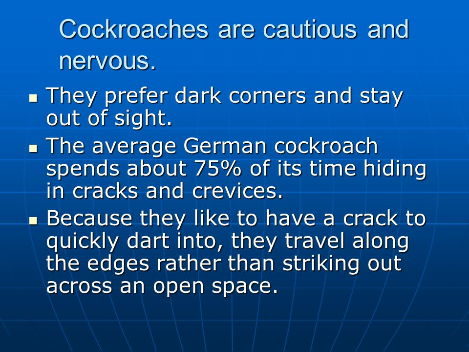Cockroaches are cautious and nervous.