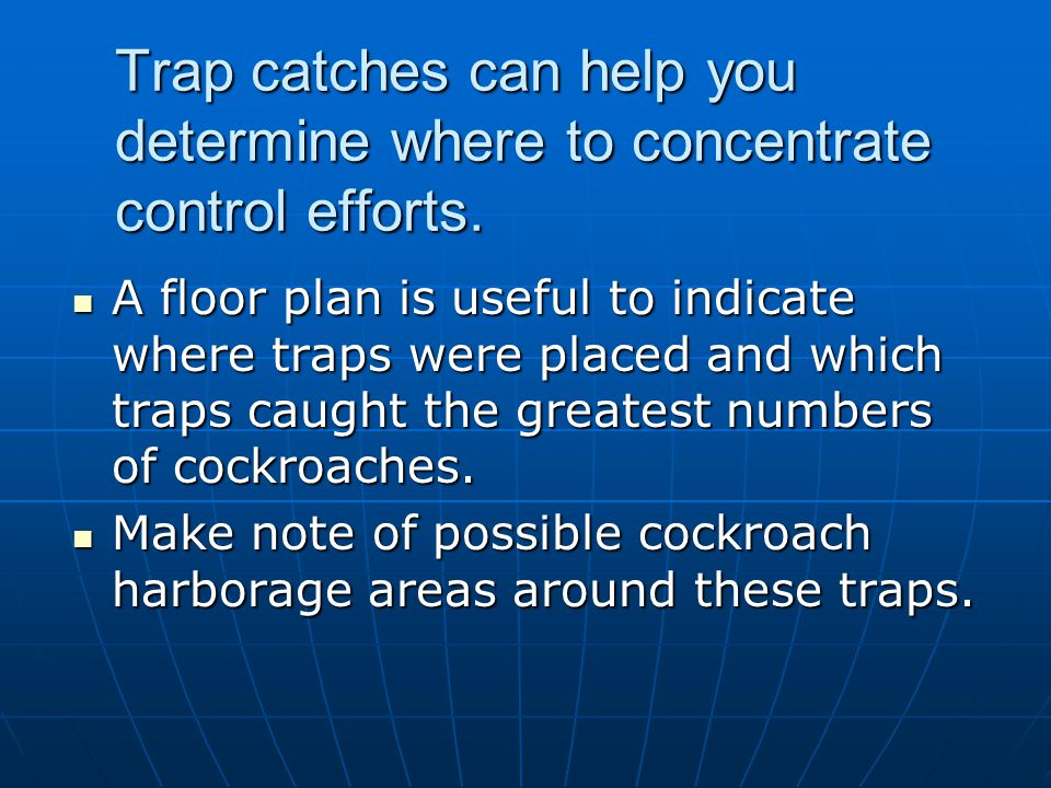 Trap catches can help you determine where to concentrate control efforts.