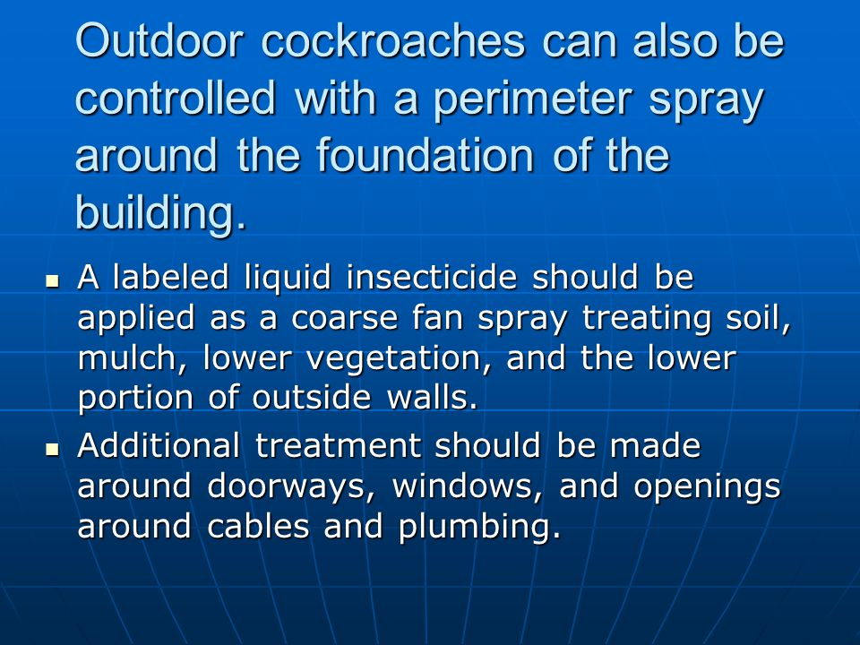 Outdoor cockroaches can also be controlled with a perimeter spray around the foundation of the building.