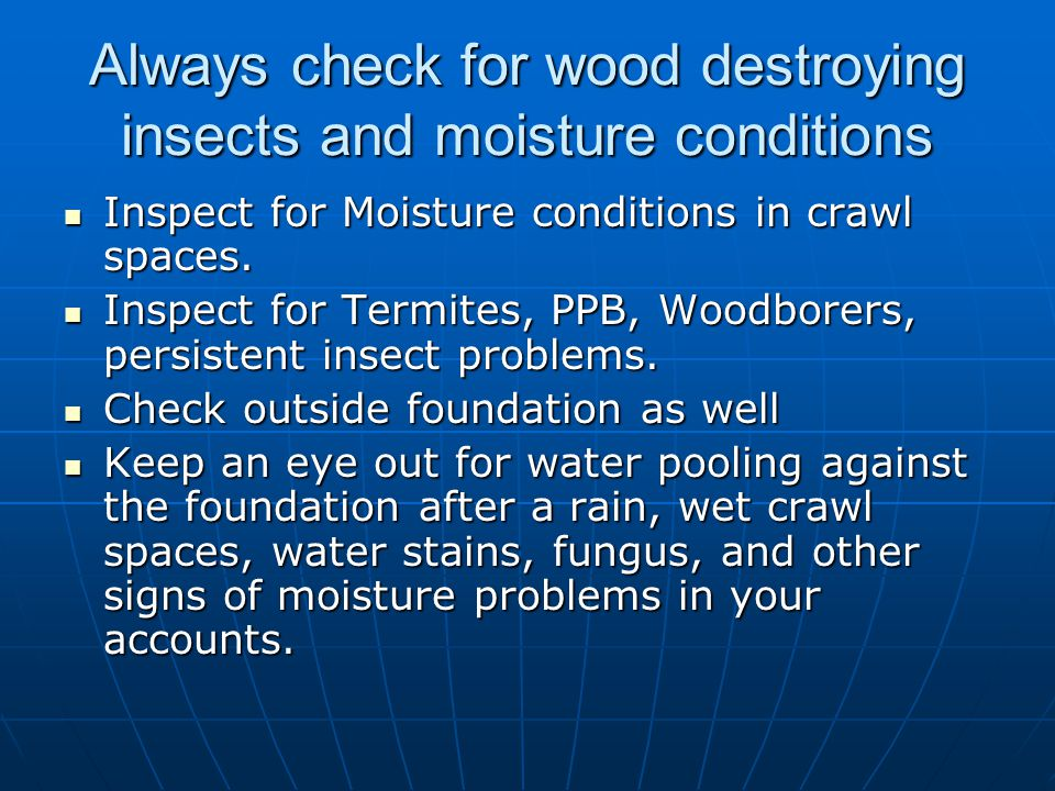 Always check for wood destroying insects and moisture conditions